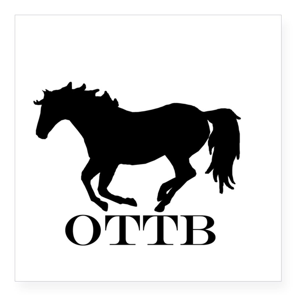 Amazon com cafepress off track thoroughbred sticker square bumper sticker car decal 3x3 small or 5x5 large home kitchen