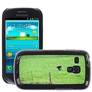 Hot Style Cell Phone PC Hard Case Cover // M00114601 Common Buzzard In The Flight Buzzard // Samsung Galaxy S3 MINI i8190