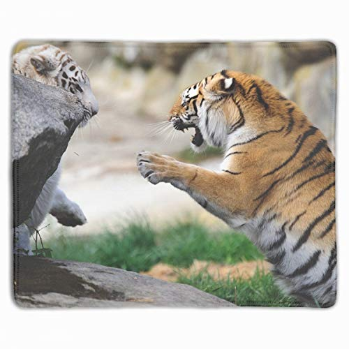 Tigers Game The Pair Wild Cats Rubber Mouse Pad Desktop Anti Slip Computer Mouse Mat 11.8-inch by 9.85-inch