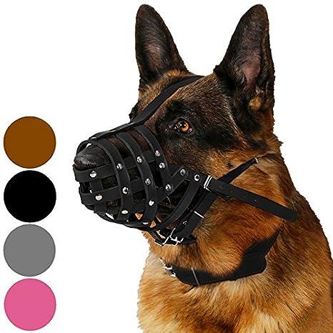 CollarDirect Dog Muzzle German Shepherd Dalmatian Doberman Setter Leather  Basket Medium Large Breeds Black Brown (