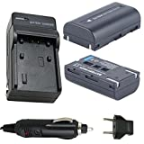 SB-LSM80 (2-Pack) Battery and Charger for Samsung SC-D351, SC-D352, SC-D353, SC-D354, SC-D355 Digital Camcorder