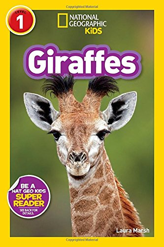 Giraffe Gifts And Collectibles Kritters In The Mailbox