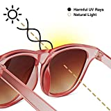 Hipsterkid Polarized Baby Sunglasses with