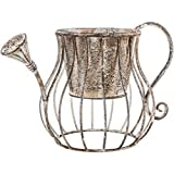 Cheap Rustic Metal Watering Can Planter Home Decoration Gift