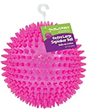 """Gnawsome Large Squeaker Ball Dog Toy, Extra Large 4.5"""", Assorted colors"""
