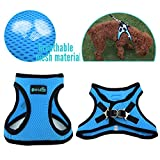 PET OPT Pet Safety Harness,Personalized Dog Harness for Dog and Cat (Medium, Blue)