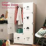 Tespo Portable Closet Clothes Wardrobe Organizer Plastic Organizer DIY Cube Bedroom Cabinet,White(5 Cubes & 1 Hanging Cube, Sticker)
