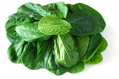 Tyee Hybrid Spinach Seeds