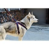 Denim Freedom No-pull Dog Harness Training Package with Leash (Red, M Chest: 45cm-60cm)