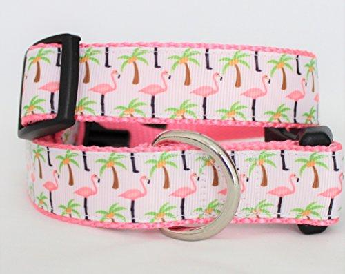 flamingos palms dog collar