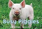 Busy Piggies, John Schindel, 1582461694