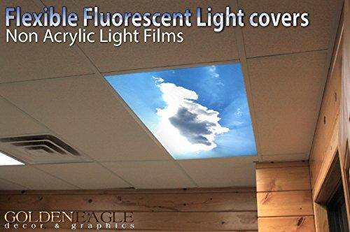 Suspended Ceiling Fluorescent Lights - 5