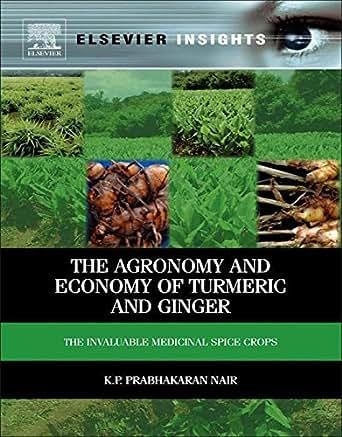 book Psychoeducational Groups: Process