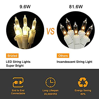 Brizled 100 LED 66 ft LED Christmas Lights 120V UL Certified, for Indoor and Outdoor Decoration, Patio and Christmas Tree