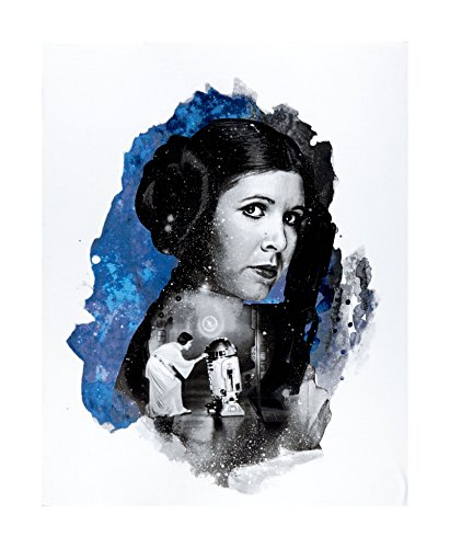 (CAMELOT Fabrics Star Wars Refresh Princess Leia 36