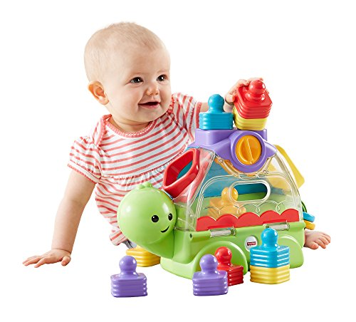 Fisher-Price Little Stackers Sort 'n Spill Turtle (Price Stacker Fisher)