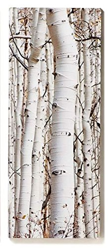Gift Craft Canvas Print, Birch Panel
