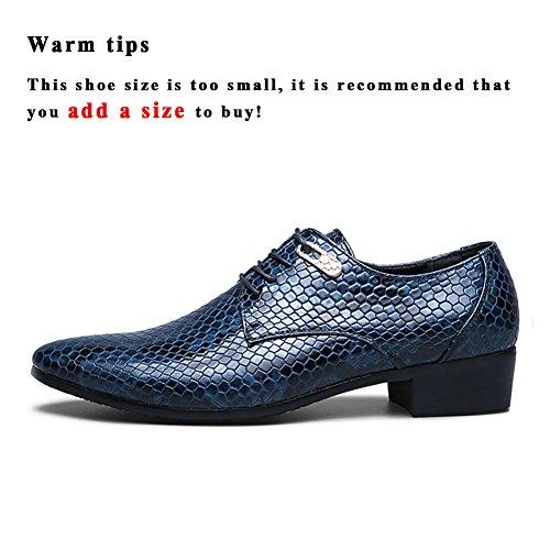 ASHION Business Schnürschuh Herren Schuhe Klassische Spitze Schuhe (40 EU, Blau)