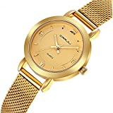 Women's Watches Casual Fashion Stainless Steel Waterproof Watches Gold Mesh Band Quartz Wrist Watch