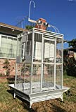 New Large Double Ladders Open Play Top Wrought Iron Bird Parrot Parttot Finch Macaw Cockatoo Cage, Include Seed Guard and Toy Hook