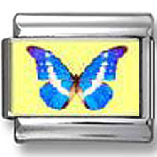Blue Butterfly Photo Italian Charm