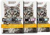 Friends Forever Breakaway Cat Collar - 3 Pack Fancy Cat Collars Breakaway Geo × Trible Pattern & Bell - Pink/Blue / Cyan Adjustable Nylon