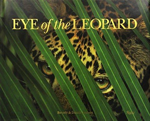 Eye of the Leopard by Dereck Joubert (2009-09-22) ()