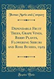 Amazon / Forgotten Books: Dependable Fruit Trees, Grape Vines, Berry Plants, Flowering Shrubs and Rose Bushes, 1929 Classic Reprint (Thomas Marks and Company)