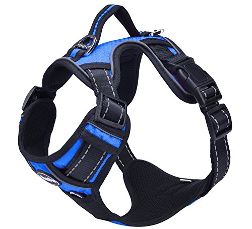 PUPTECK-Best-Front-Range-No-Pull-Dog-Harness-with-Vertical-HandleCalming-Adjustable-Reflective-Outdoor-Adventure-Pet-VestBlue-M