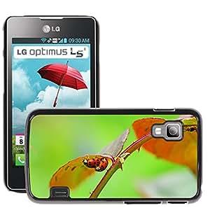 Etui Housse Coque de Protection Cover Rigide pour // M00134802 Harlequin Cópula apareamiento Mariquita // LG Optimus L5 II Dual E455 / E460