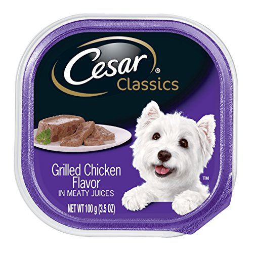 CESAR CLASSICS Grilled Chicken Flavor in Meaty Juices Dog Food Trays 3.5 Ounces (Pack of 24)