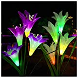Lovezeu Outdoor Solar Garden Lights 2 Pack Solar Powered Lights with 8 Lily Flower, Multi-Color Changing LED Solar Decorative Lights for Garden, Patio, Backyard (Purple and White)