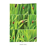 Custom printed Throw Blanket with Apartment Decor Ladybug over Fresh Grass Collection in Divided Collage Vibrant Life Lawn Foliage Theme Decor Green Red Super soft and Cozy Fleece Blanket