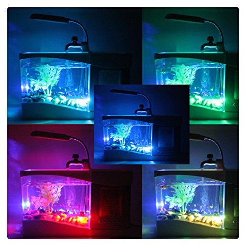 Creativo multifunción USB pecera de mini acuario de la lámpara LED de la pluma pequeña pecera: Amazon.es: Hogar