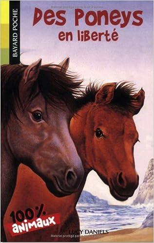 Des poneys en liberté