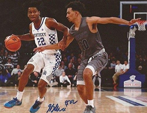 Shai Gilgeous-Alexander signed Kentucky Wildcats 8x10 photo autographed 5 - Autographed College Photos -
