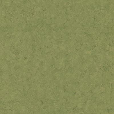Brewster 412-56934 20.5-Inch by 396-Inch Texture Hue - Textured Depth Wallpaper, Green
