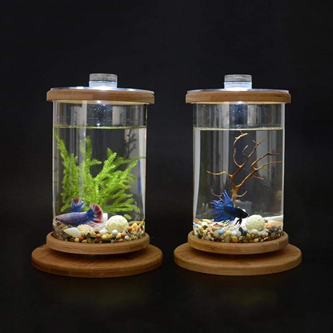 LOVIVER Tanque de Peces Creativo Acuario para Pescado Florero de Vidrio 14.5x18 cm: Amazon.es: Productos para mascotas
