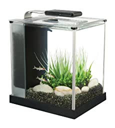 Fluval Spec III Aquarium Kit, 2.6-Gallon, Black