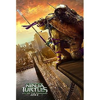 Amazon.com: Teenage Mutant Ninja Turtles (2014) 24
