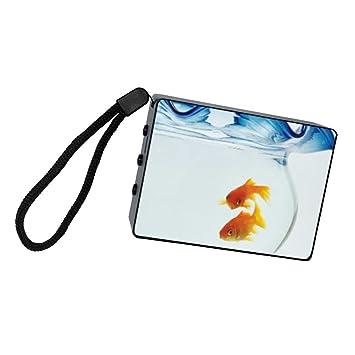 Pátinas de peces en una pecera portátil Bluetooth Altavoces estéreo batería resistente a los golpes y al polvo altavoz inalámbrico: Amazon.es: Electrónica