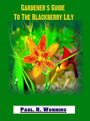 Gardeners guide to the blackberry lily leopard flower full sun gardeners guide to the blackberry lily leopard flower full sun perennial for your garden mightylinksfo