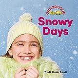 Snowy Days (Benchmark Rebus)