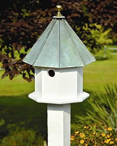 Heartwood 035B Oct-Avian Decorative Bird House ()