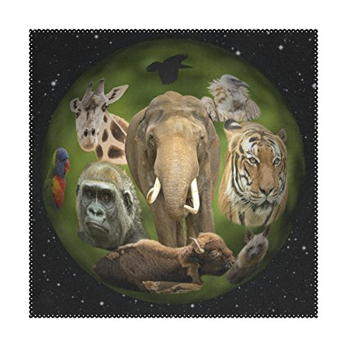 GIOVANIOR Animal Planet Placemats 12