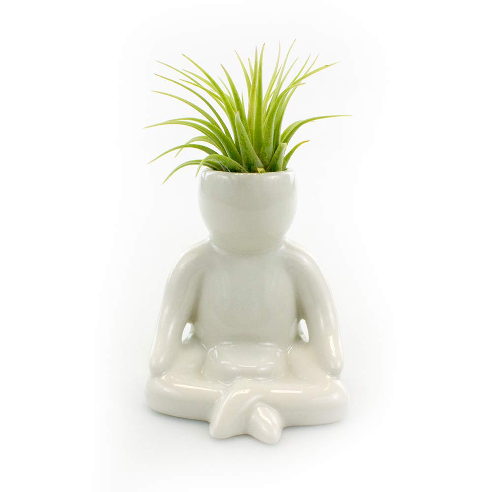 Ceramic Air Head People Planters – Air Plant Holders – Table Top Display Planters for Air Plants and Other Mini Plants Meditating