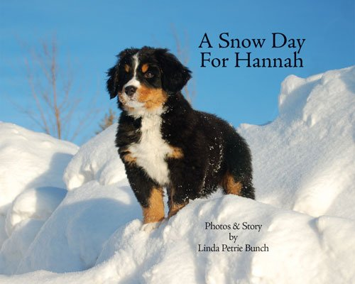 A Snow Day for Hannah (Mountain Dog Books) PDF