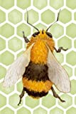 Bee: 150 Lined Journal Pages / Notebook / Bee and Honeycomb