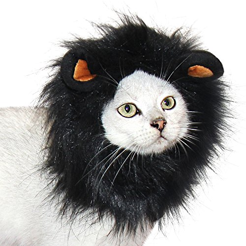 Costumes For Cats Lion (CPPSLEE Lion Mane Wig Costume for Cat (Black))