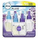 Health & Personal Care : Febreze Febreze Plug in Air Freshener Scented Oil Refill, Mediterranean Lavender, 3 Count